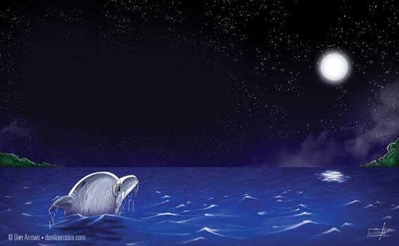 Stars by the sea by daniloaroeira