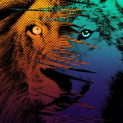 Lions vs. Wolves by neworlder
