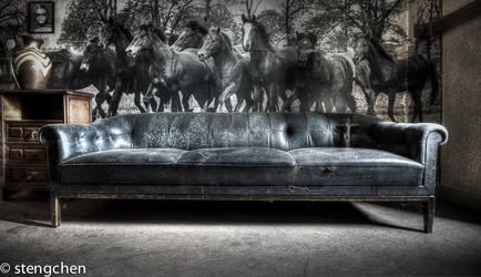 Wild Horses by stengchen
