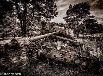Tank by stengchen