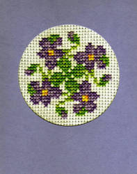 Violets by salford1
