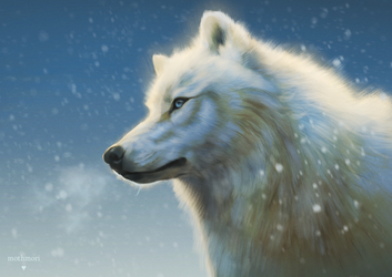 Frost (+Speedpaint) by mothmori