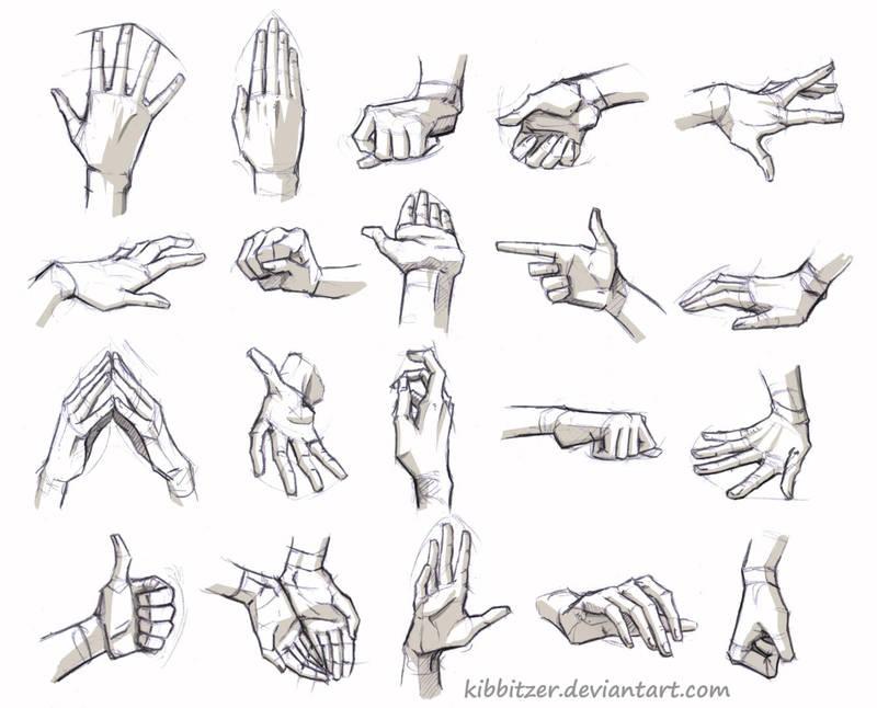 Hands Reference By Kibbitzer On Deviantart