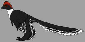 Anchiornis by StygimolochSpinifer