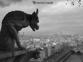 PARIS V by CountessBloody