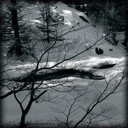 In the winter's intimacy by CountessBloody