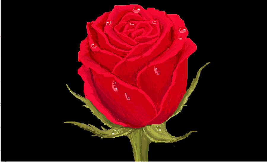 Red Rose With Water Drops In Ms Paint By Londonhouse