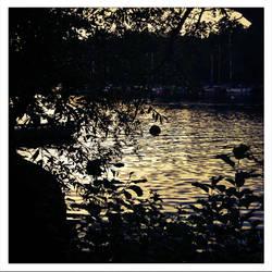 Reimersholme Summer 2012 #11 by cm-arts