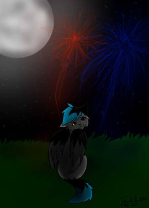 Fireworks by Gravelleaf