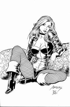 The Black Canary by kwill916