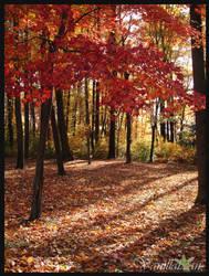 Autumn Beauty by Sir-Isac-Vanillabean