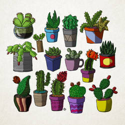 Cactus Serie 2 by Alecobain26