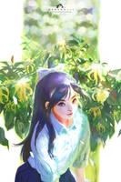 Desmos chinensis by webang111
