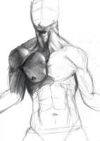 Male anatomy study WIP by DemonShuriken87