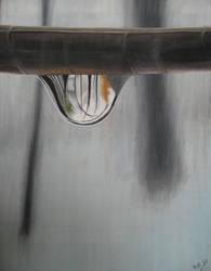 raindrop by briezyislove