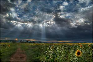 Lichterspiele in den Wolken by Analil