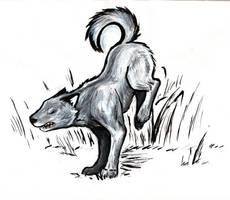 landing wolf by daidaishar