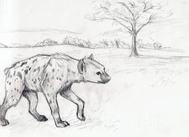 hyena by daidaishar