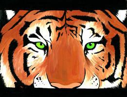 Tiger by daidaishar