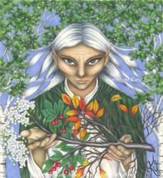Elf Druid by Flyttamouse