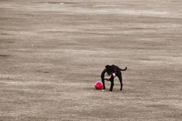 Ball licker by CitizenJustin