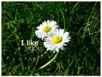 I like you by 161before