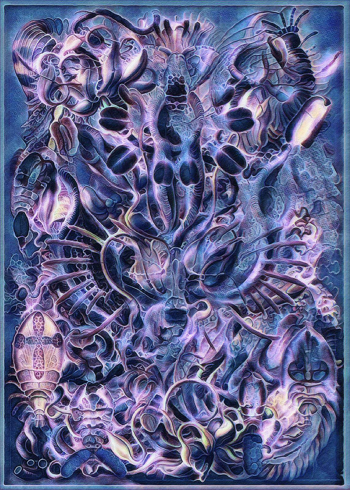 Haeckel Variation 12b by james119