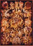 Haeckel Variation 21 by james119