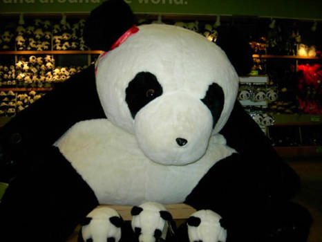 Big Panda by Pandapire
