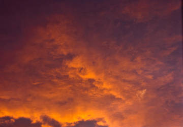 Dragon Sunset 021 by amethystmstock