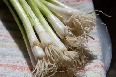 Healthy Cooking 118 by amethystmstock