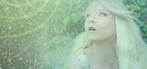 Enchanted-Detail 3 by amethystmstock