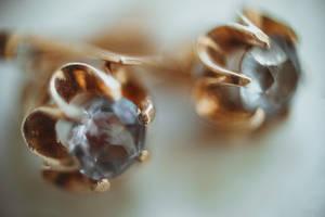 earrings by Teyvilin
