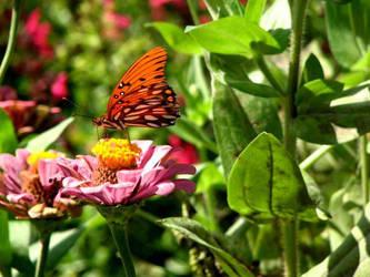 Butterfly 2 by Bethy-Go-Blah