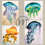 Jellyfishes by KaworuN