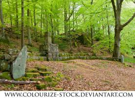 Landscape Stock 35 by Colourize-Stock