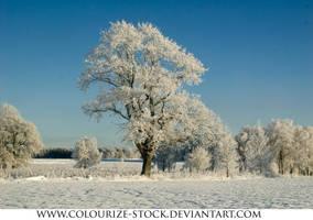 Landscape Stock 64 by Colourize-Stock