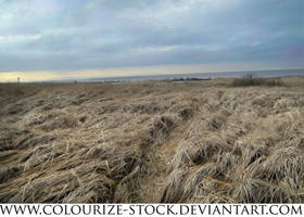 Landscape Stock 56 by Colourize-Stock