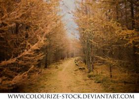Landscape Stock 127 by Colourize-Stock