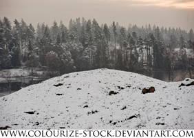 Landscape Stock 82 by Colourize-Stock