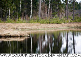 Waterscape 21 by Colourize-Stock