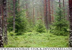 Landscape Stock 97 by Colourize-Stock