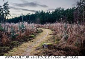 Landscape Stock 115 by Colourize-Stock