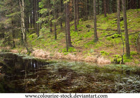 Landscape Stock 125 by Colourize-Stock
