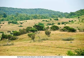 Landscape Stock 151 by Colourize-Stock