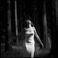 dancing with the trees by bagnino