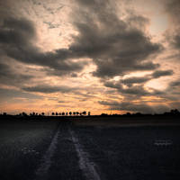 my way by bagnino