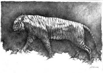 Javan Tiger by prab-prab