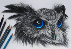 The night owl :) by AnnasDrawing