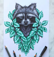 Racoon :) by AnnasDrawing